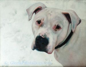 Painted pet portrait, American Bulldog, Massachusetts, Chance.jpg